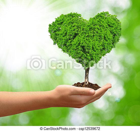 Crecer Forma Corazón árbol Corazón árbol Mano Forma Fondo