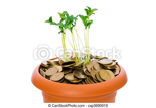 Semillas verdes creciendo de la pila de monedas - csp3690919