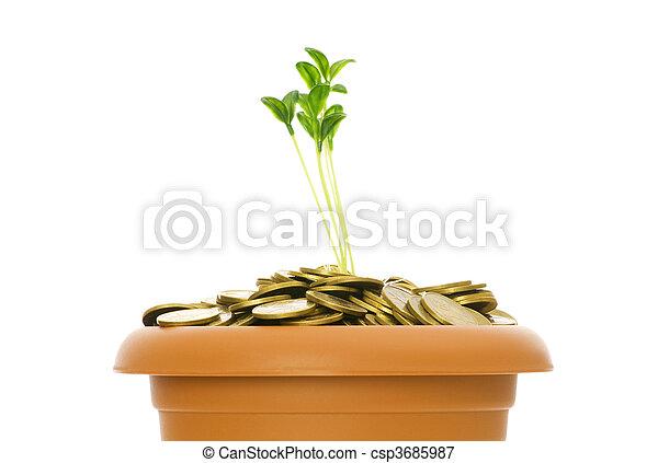 Semillas verdes creciendo de la pila de monedas - csp3685987