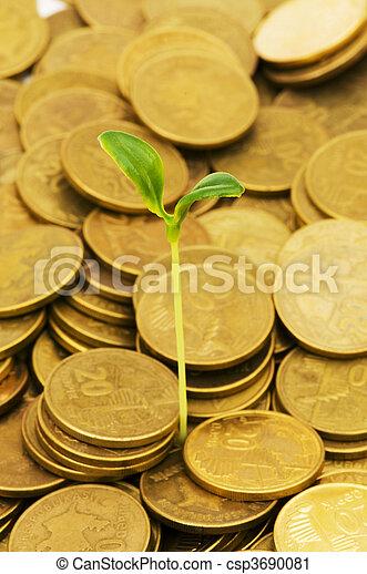 Semillas verdes creciendo de la pila de monedas - csp3690081