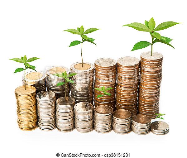 Planta creciendo de monedas. - csp38151231
