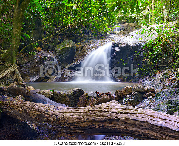 Creek in tropical forest  Beautiful landscape with trees, mossy stones and green plants  Adventure background - csp11376033