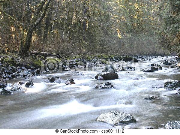 Creek - csp0011112