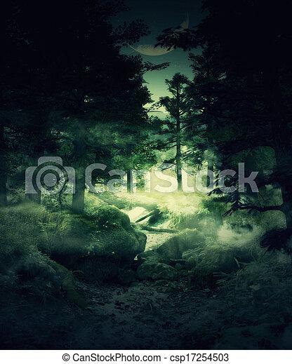 crepúsculo, bosque - csp17254503