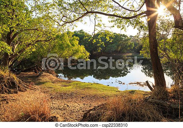crescente, albero, lago, banca - csp22338310