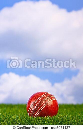 Cricket ball on grass - csp5071137