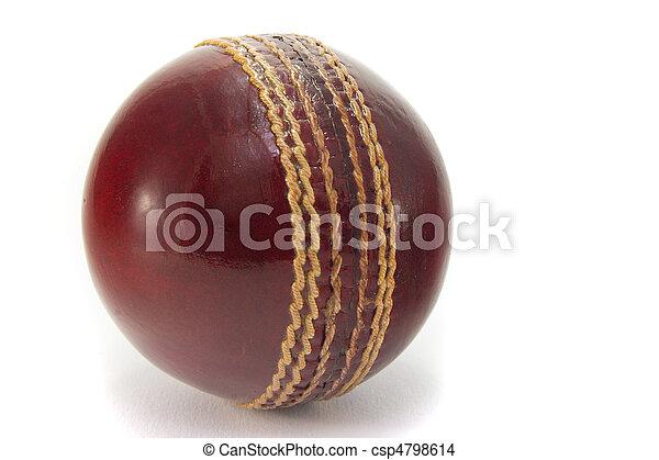 Cricket ball - csp4798614