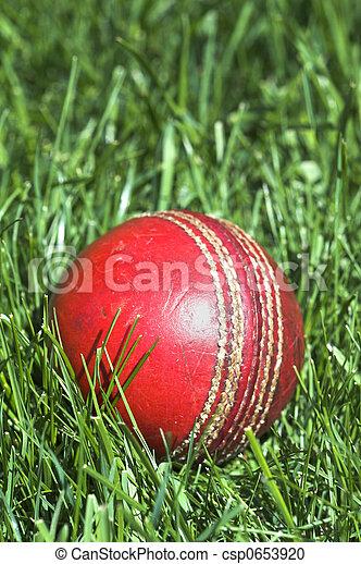 Cricket ball - csp0653920