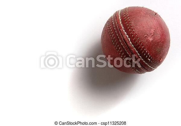 Cricket Ball - csp11325208
