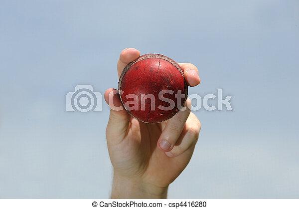 Cricket Ball - csp4416280
