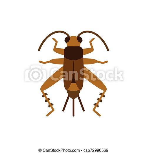 Cricket Bug grig insect single flat vector icon - csp72990569