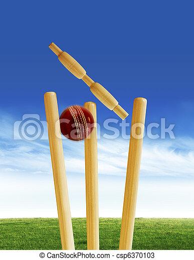 Cricket match - csp6370103