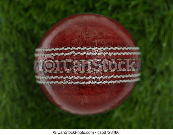 Cricket - csp8723466