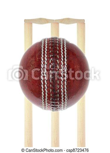 Cricket - csp8723476