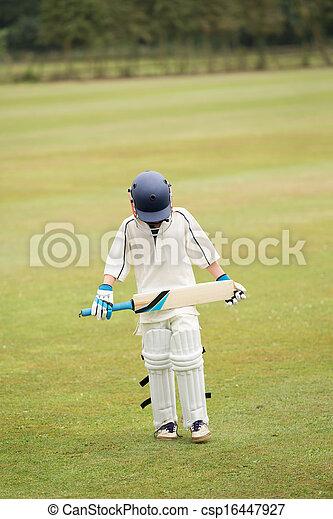Cricket - csp16447927