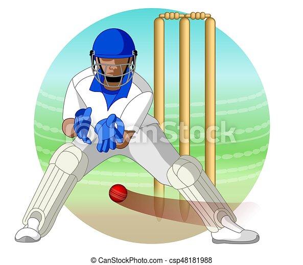 cricket wicket keeper - csp48181988