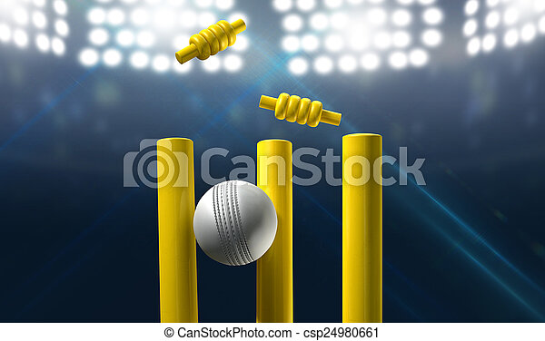 Cricket Wickets And Ball In A Stadium - csp24980661