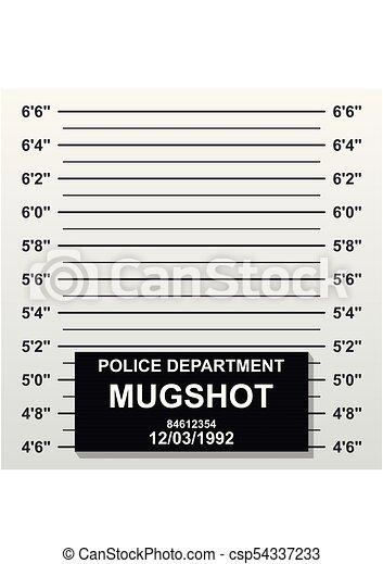 Criminal mug shot line. Police mugshot add a photo. Blank criminal police lineup with centimeter scale for photograph. Vector illustration - csp54337233