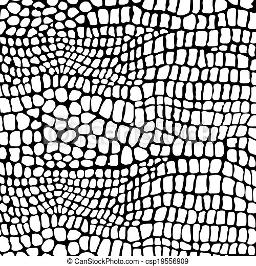 crocodilo, negativo, pele - csp19556909