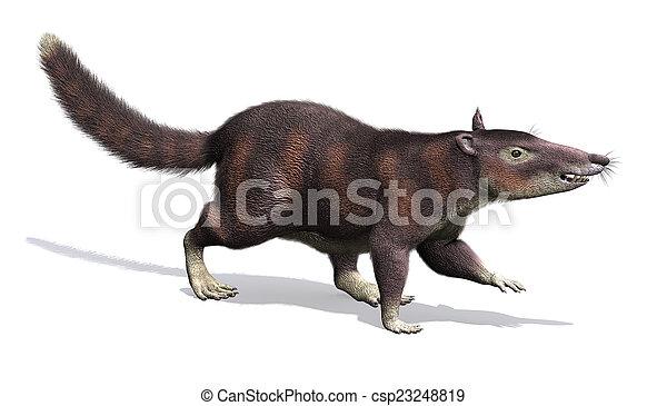 cronopio, 유사 이전의, -, 포유동물 - csp23248819
