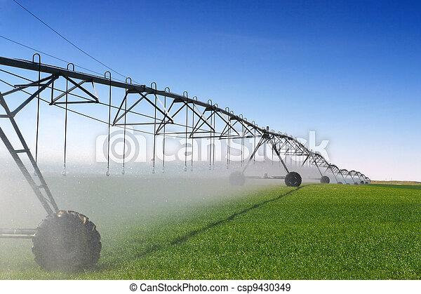 Crop Irrigation - csp9430349