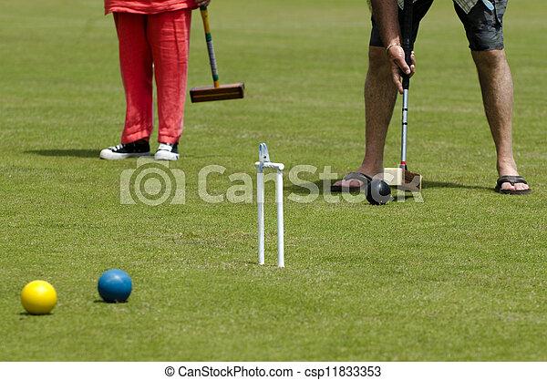 Croquet Game - csp11833353