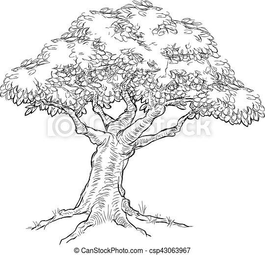 Croquis arbre style woodcut style ch ne woodcut - Croquis arbre ...