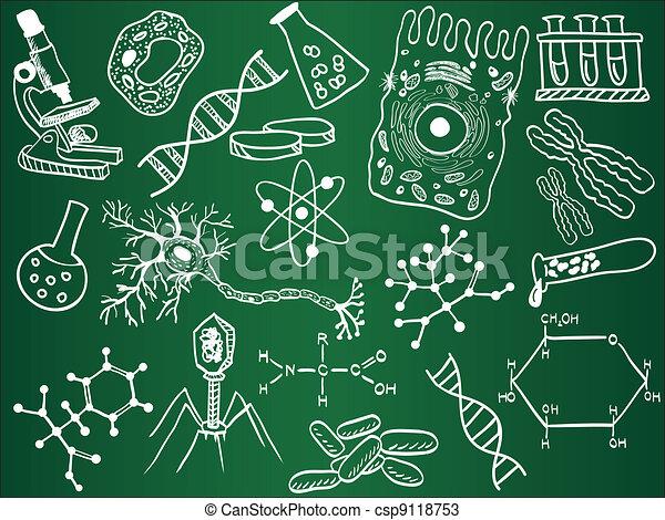 croquis, biologie, école, planche - csp9118753