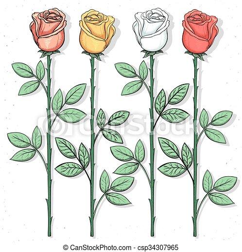 Croquis Fleur Couleur Fait Main Isole Roses Style Toile