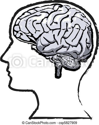croquis, grunge, esprit, cerveau, humain, rugueux - csp5827909