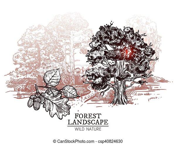 Croquis paysage arbre illustration croquis ch ne - Croquis arbre ...