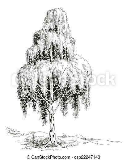 Croquis vecteur arbre bouleau vecteur eps rechercher - Croquis arbre ...