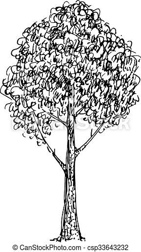 Croquis Vecteur Illustration Arbre Noir Blanc