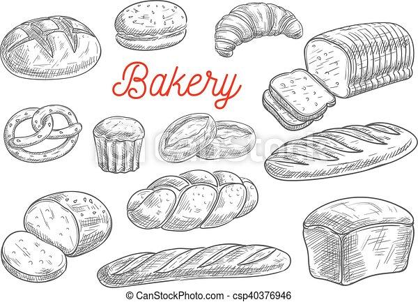 Croquis Vecteur Produits Boulangerie Pain Biscuit Croquis