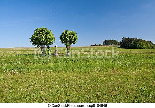 cross in the field - csp8104946