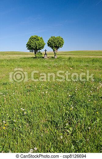 cross in the field - csp8126694