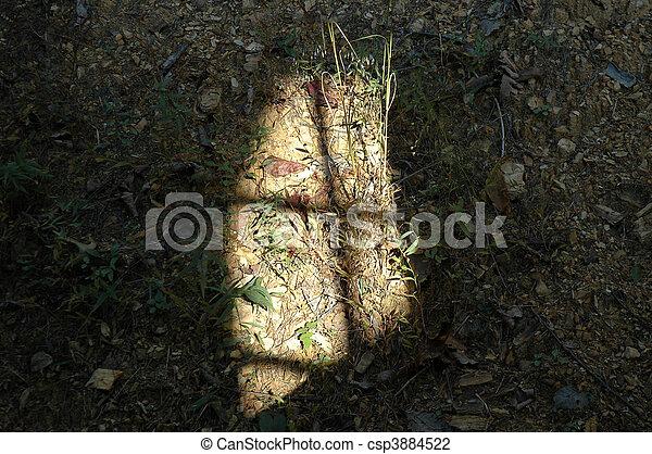 Cross in the Sunlight - csp3884522