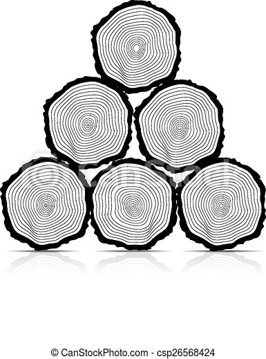 Cross section of the trunk, vector illustration - csp26568424