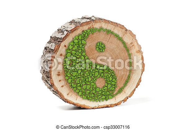 Cross Section Of Tree Trunk With Ying Yang Symbol