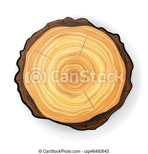 cross section tree wooden stump vector tree round cut with eps rh canstockphoto com  tree stump clip art black and white