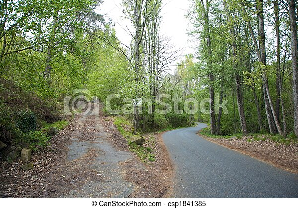 crossroads in the forest - csp1841385