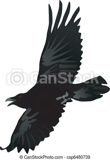 crow 2 - csp6480739