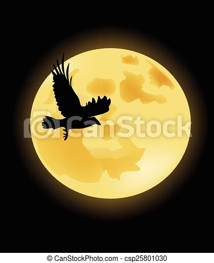 Crow on the background of the moon - csp25801030