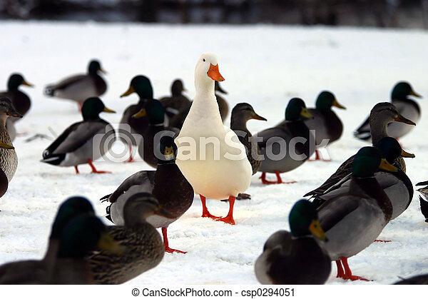 crowd?, vous, ressortir - csp0294051