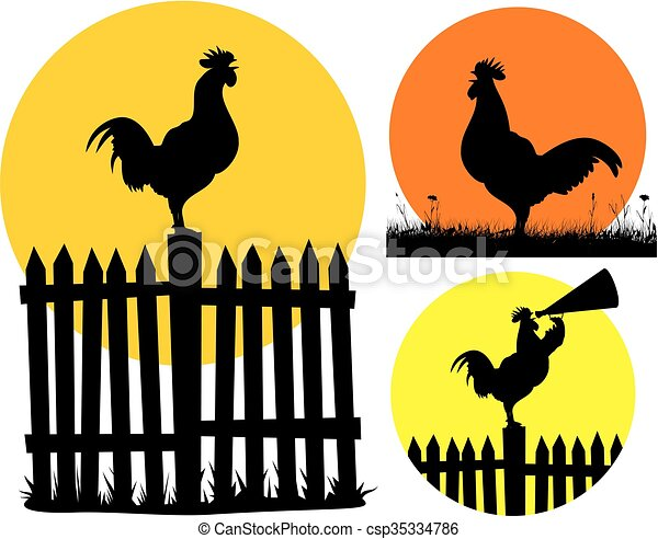 crowing rooster - csp35334786