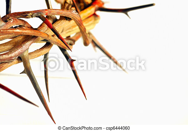 Crown of thorns isolated on white  - csp6444060