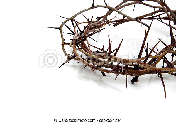 Crown of thorns on a white background - csp2524214