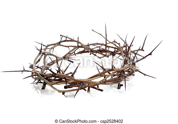 Crown of thorns on a white background - csp2528402