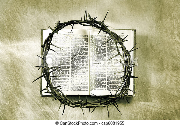 crown of thorns - csp6081955