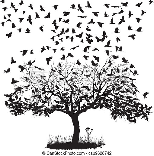 Crows in a tree - csp9628742